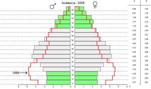 Piramide de población andaluza 1986 - 2008